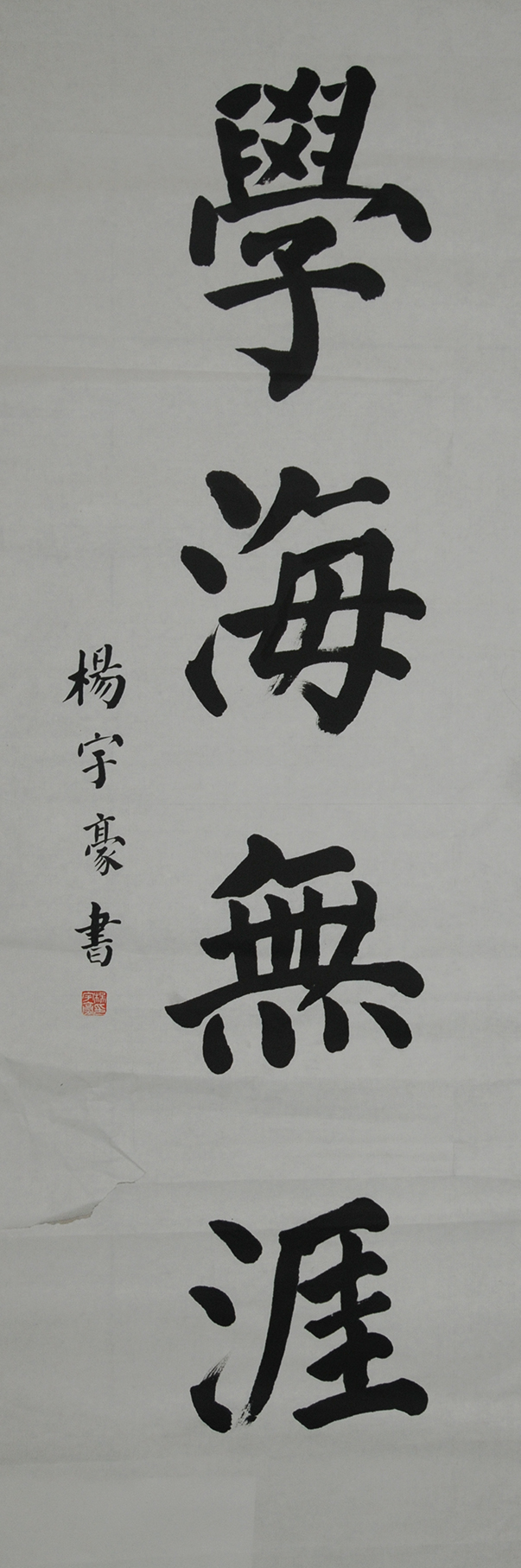 杨宇豪  学海无涯
