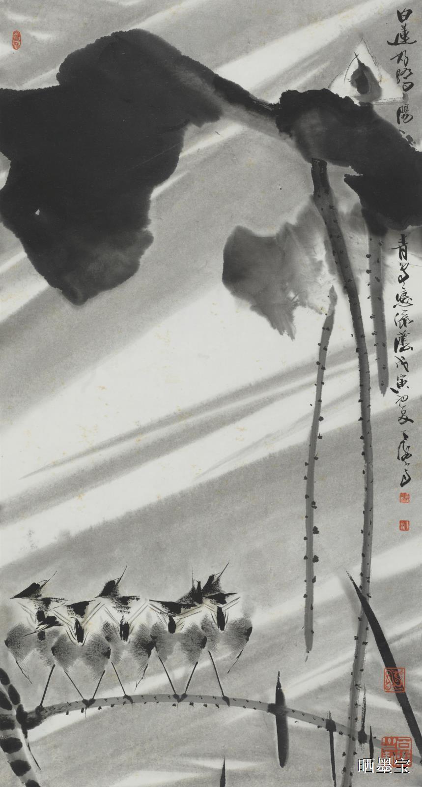1998年白莲好骄阳图