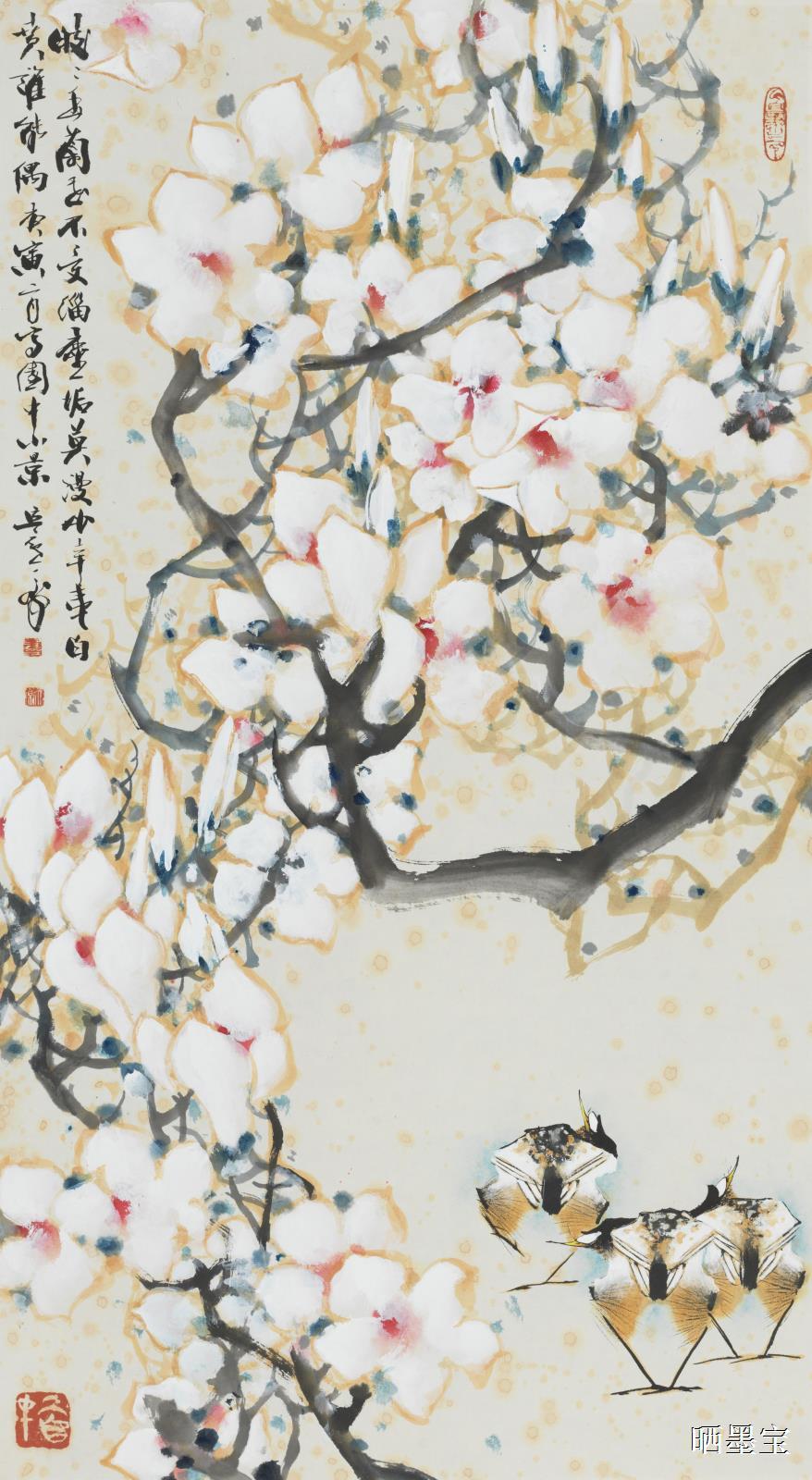 2010年皎皎玉兰花